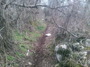 Il sentiero della Ristocca perfettamente pulito rivive con il suo grande passato