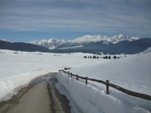 Pian Cansiglio e sullo sfondo il gruppo del Monte Cavallo