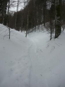 Sentiero innevato fra i villaggi Cimbri