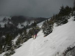 Sentiero CAI 994