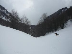 Neve immacolata che ci attende per la discesa