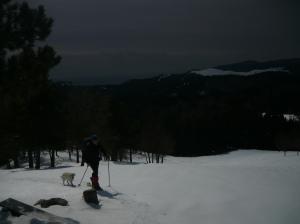 Tony e Lady verso la cima del Monte Ceresera