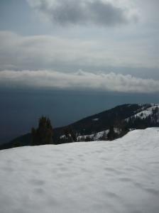 Strada forestale verso Mezzomonte