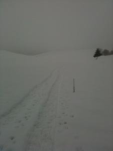 Verso casera Del Medico, notare il paletto sepolto dalla neve!