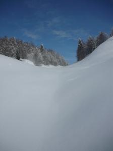 Risalendo la valle, neve immacolata