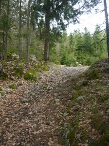 Sentiero OeAV 291