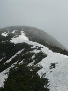 Cresta prima della cima del monte Provagna che ora vediamo