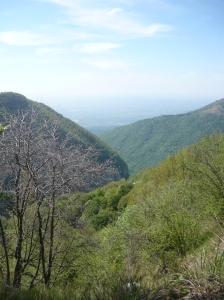 Vista verso la verde valle
