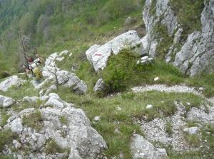 Sentiero CAI 973a