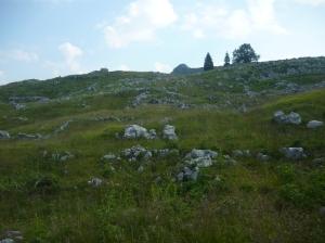 Ruderi di casera Dietro Ciastelat e la piccola cima del Monte Ciastelat