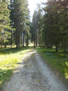 Sentiero CAI 362