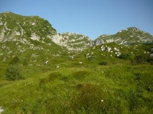 Le tre cime di oggi (da destra verso sinistra): Palantina, Colombera e Tremol