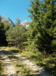 Verso la sorgente Tornidor, sentiero CAI 925
