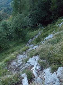 Sentiero CAI 925