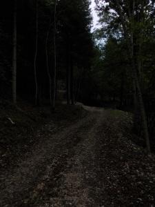 Sentiero CAI 975/976