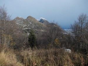 Gruppo del Monte Cavallo da forcella Sauc