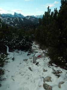 Ecco le nostre tracce di salita al bivio sul Col de le Crepe