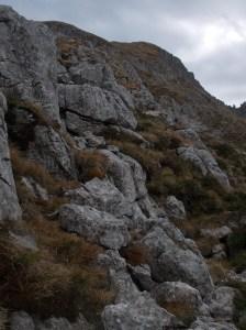 Salita dal versante Ovest di cima Val Piccola