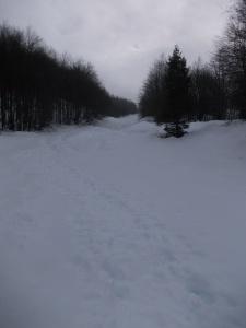 Verso forcella Giais lungo il sentiero CAI 988