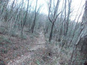 Sentiero CAI 716