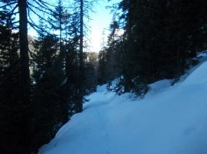 Neve immacolata lungo il sentiero