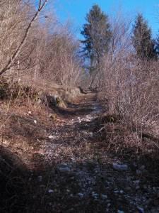 Sentiero CAI 974a