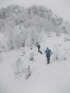 Verso la cima di San Daniele del Monte