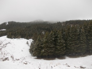 Le nuvole si addensano nel bosco del Cansiglio