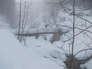 Si abbandona l'asfalto per la neve