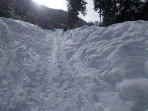 La neve abbonda