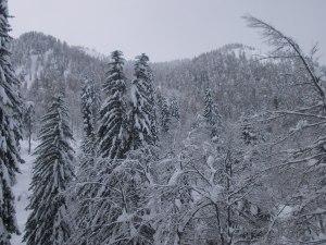 Monte Prasnig e Lussari