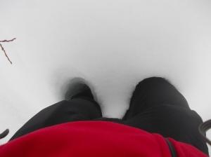 Oltre il ginocchio, è ora di indossare le ciaspole