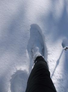Neve fresca!!!