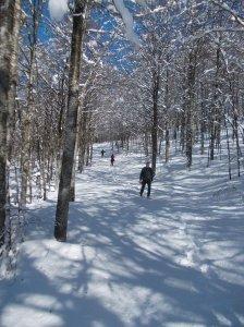 Ultimo tratto in neve fresca