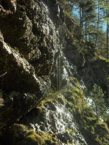 Giochi di luce e acqua vicino alle impronte