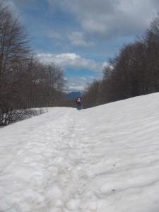 Altri escursionisti durante il rientro