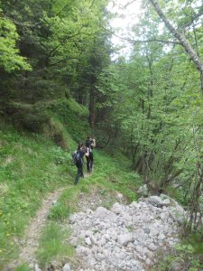 Sentiero Naturalistico Monte Ciavac