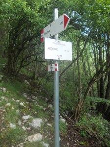 Sentiero CAI 984