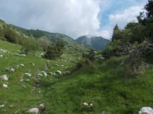 Val de Lama
