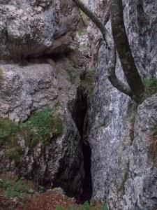 Le spaccature dei massi nel bosco formano forre molto profonde
