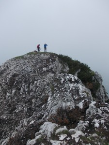 Si riparte... la breve cresta fra l'anticima e la cima del Palavierte