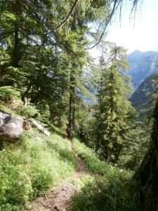 Scendendo lungo il sentiero CAI 764