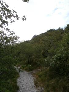 Sentiero CAI numero 1 e la punta del Cippo Comici