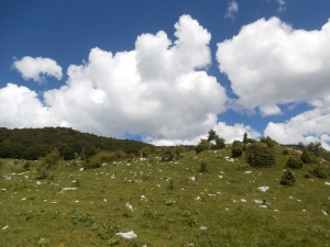 Camminando sulle montagne di casa