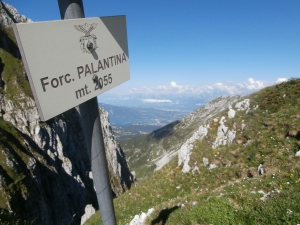 Vista da forcella Palantina