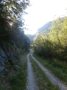 Carrareccia lungo la quale sale il sentiero CAI 924