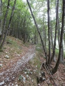 Sentiero CAI 374 in discesa