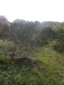Risalita verso la Creta di Mezzodì
