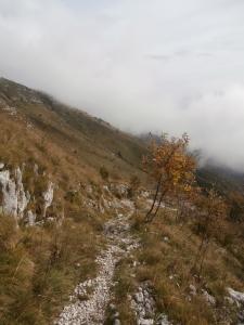 Ritorno lungo il sentiero CAI 982 mentre le nuvole si abbassano