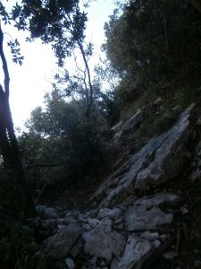 Cercando il sentiero